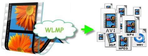 Convert WLMP to MOV