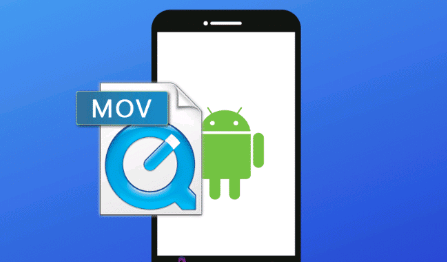 Play Mov On Android